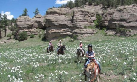 Horseback Riding through Prickly Poppy at Geronimo Trail Guest Ranch
