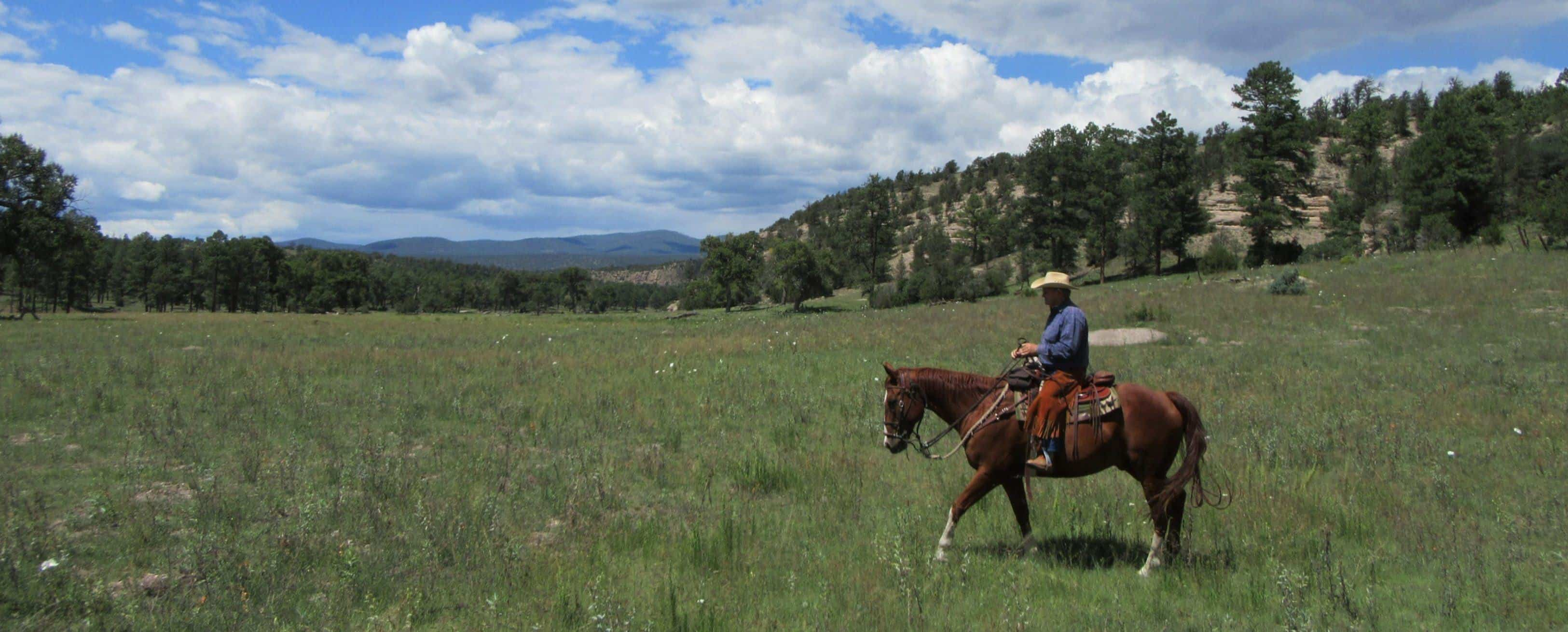 Trail Riding, Hoyt Meadow, Geronimo Trail Guest Ranch, Riders, Horseback Riding, New Mexico, Gila National Forest