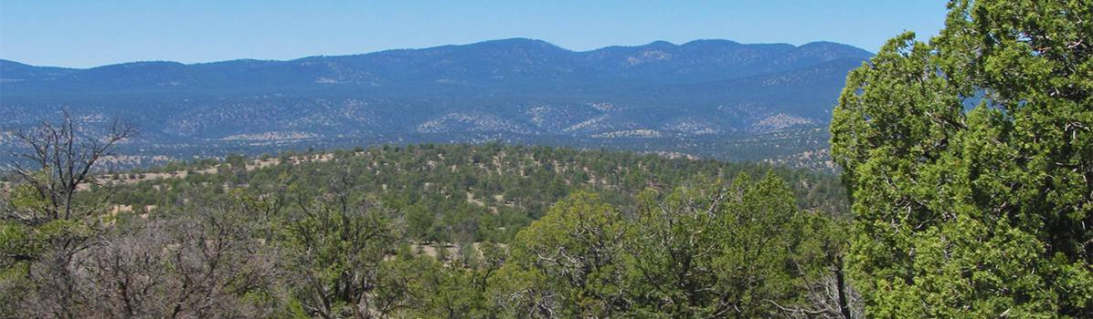 Black Mountain, Gila National Forest, New Mexico, Geronimo Trail Guest Ranch