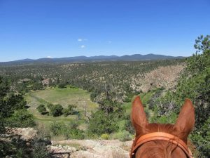 Views of the pristine 3.3 million acre Gila National Forest on a trail ride at Geronimo Trail Guest Ranch, New Mexico