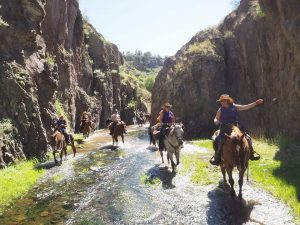 Cowgirl Getaway