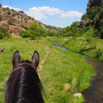 New Mexico's Best Kept Secret