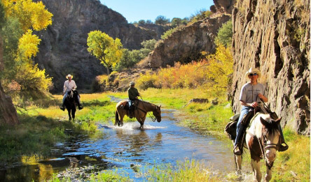 Group of riders going through stream in bottom of canyon