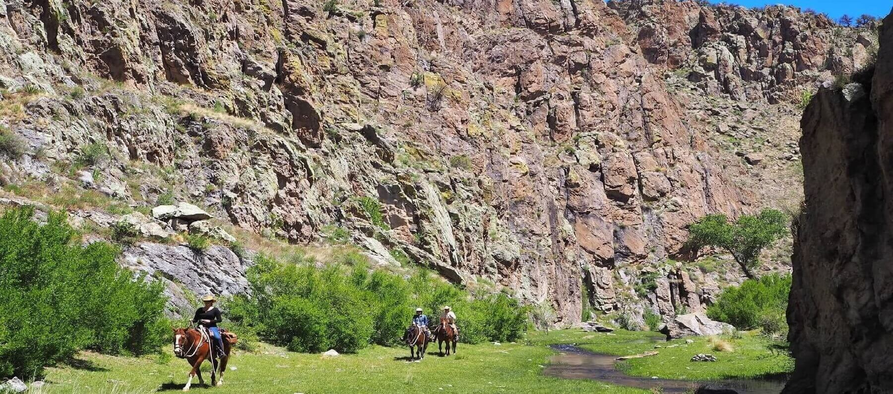 Horses in front of canyon on a New Mexico dude ranch