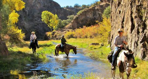 Geronimo Trail Guest Ranch, New Mexico horseback riding in the Gila National Forest.