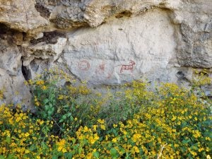 Cave paintings on Geronimo Trail Guest Ranch.