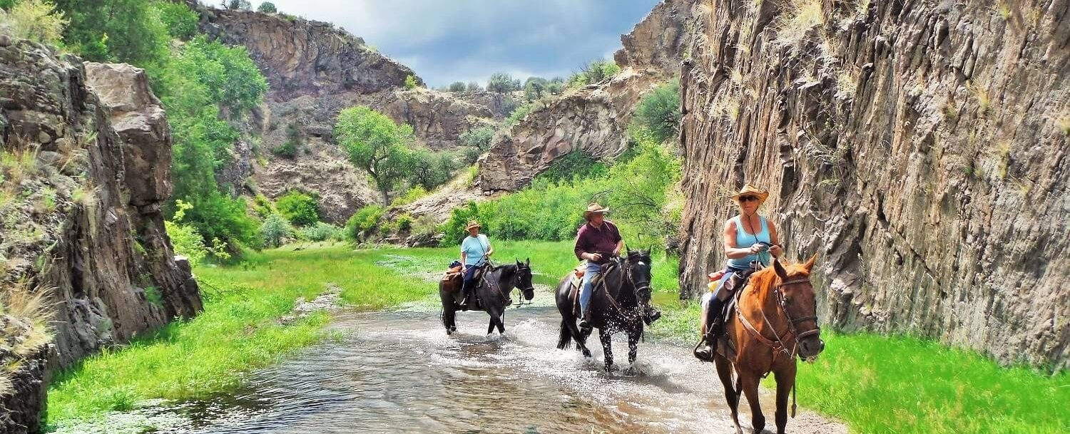 Guests riding horses through Taylor Creek