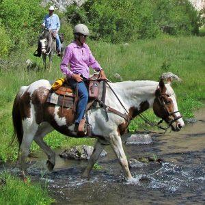 Buffalo Gal at Geronimo Trail Guest Ranch