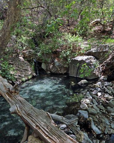 Jordan Hot Springs.