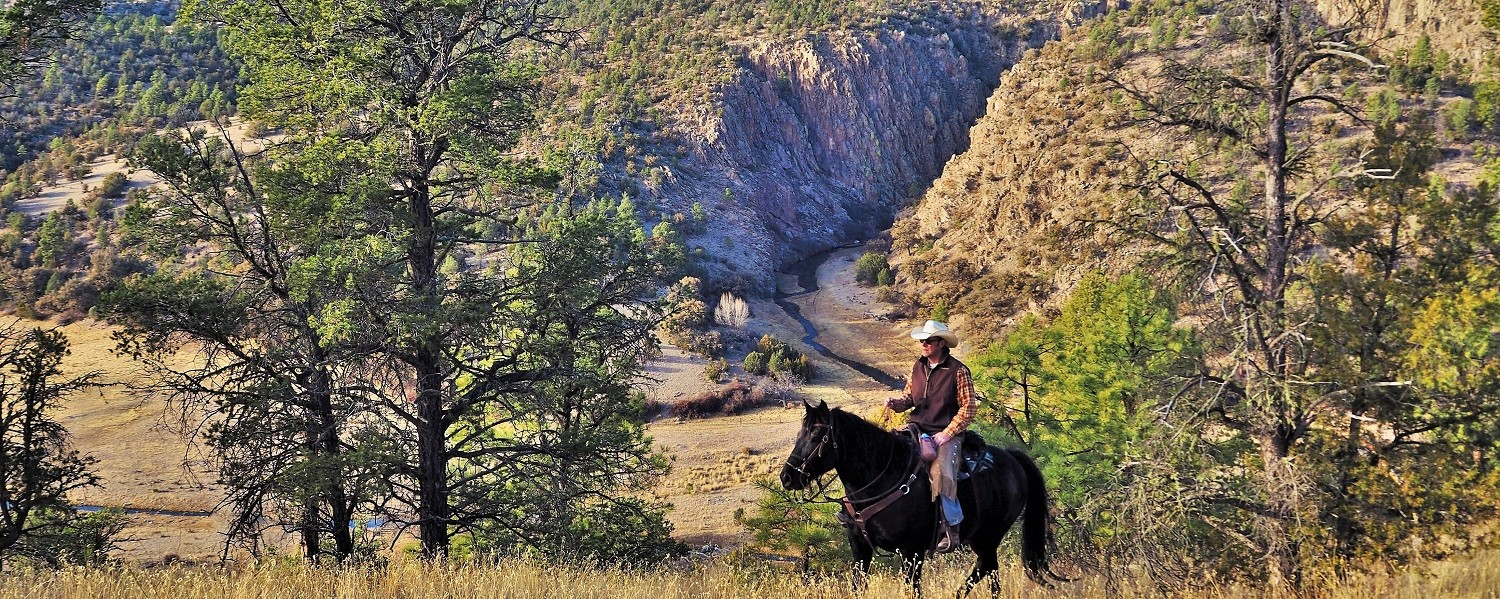 Riding above Taylor Creek Canyon, Geronimo Trail Guest Ranch, New Mexico
