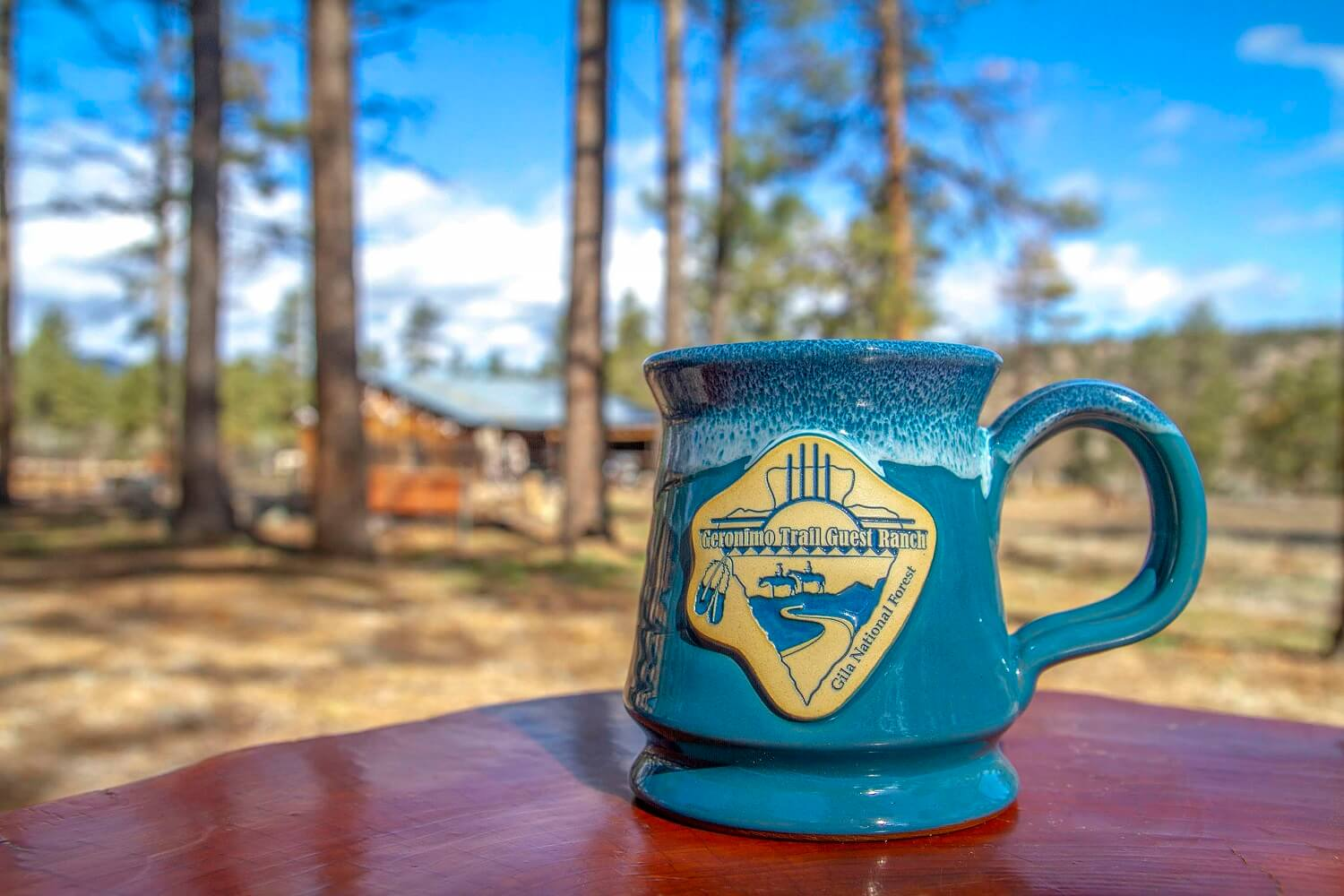 Geronimo Trail Guest Ranch Mug - Blue