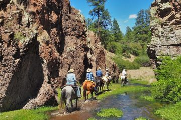 Horseback Gila National Forest