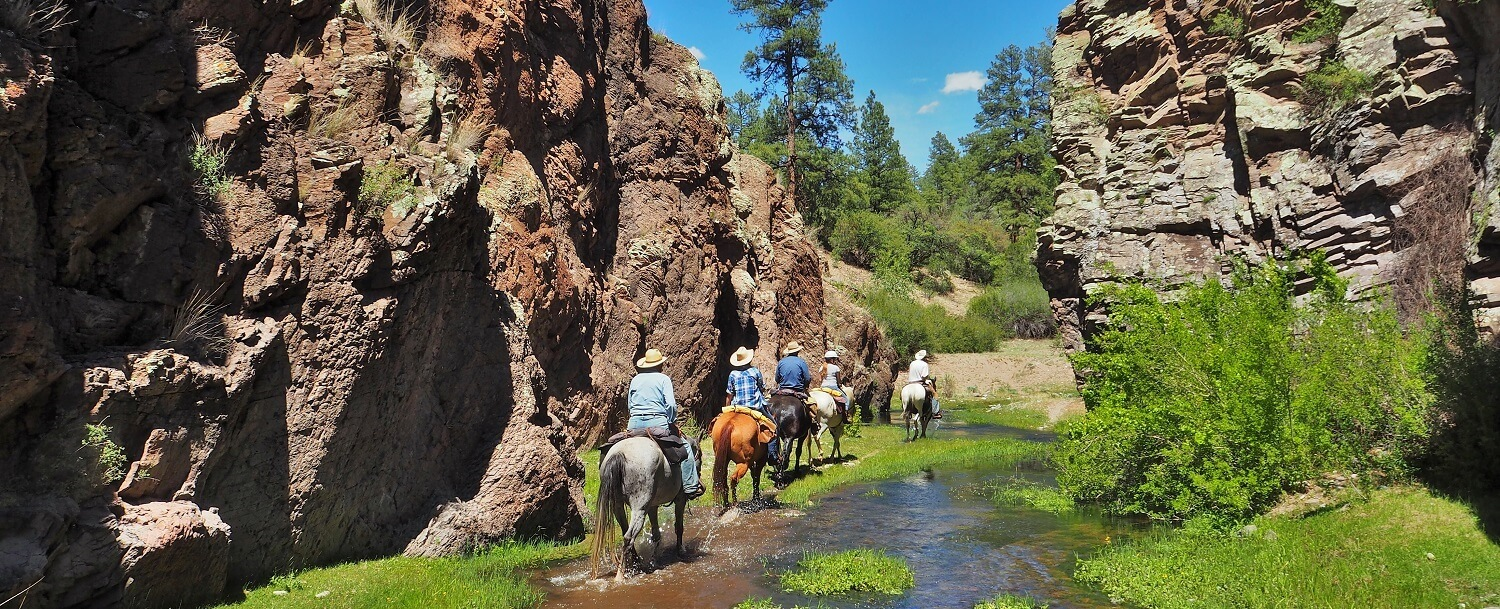Horseback Gila National Forest