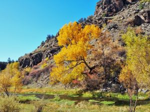 October Fall Colors at Geronimo Trail Guest Ranch, New Mexico