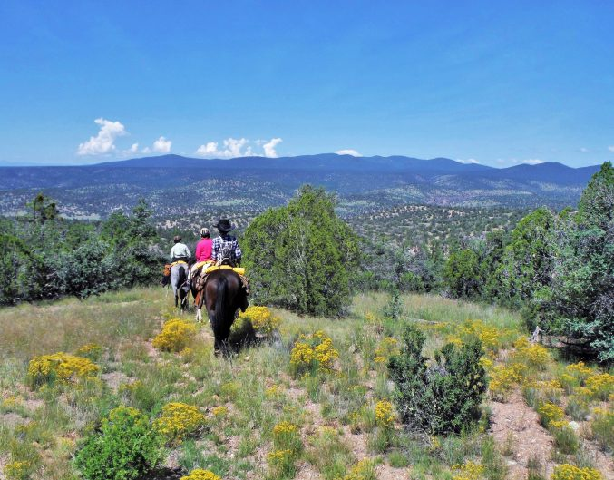 New Mexico Staycations