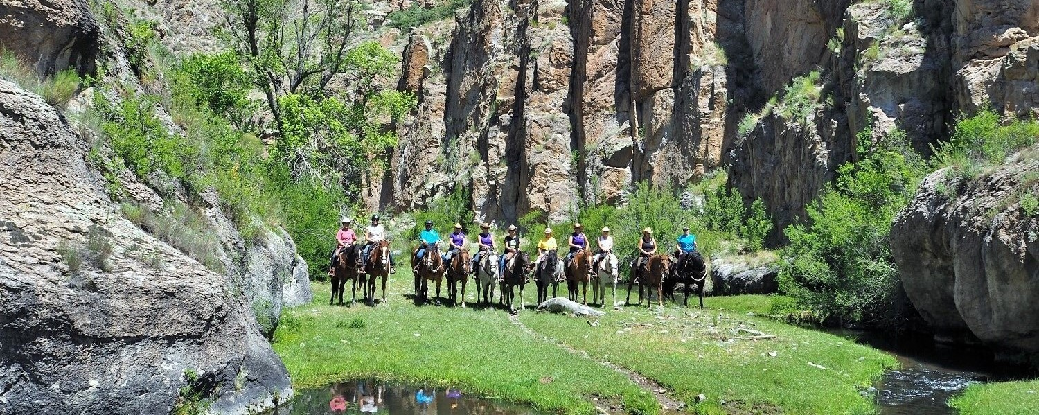 Adopt a Horse at Geronimo Trail Guest Ranch, New Mexico!