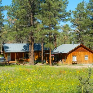 Secluded Cabins Nestled in the Ponderosa Pines.